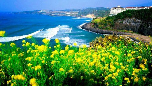 Cùng du lịch Hàn Quốc ngắm đảo JeJu